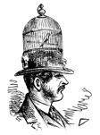 Hatter8